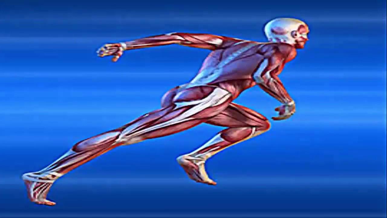 maxresdefault 74 - unlock your hip flexors -  review    unlock your hip flexors