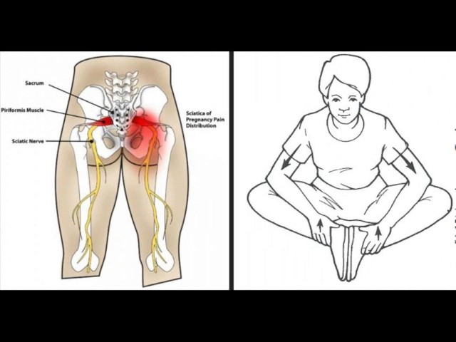 sddefault 13 - Unlock Your Hip Flexors To Unlock Hidden Survival Muscle In Your Body for Max Impact