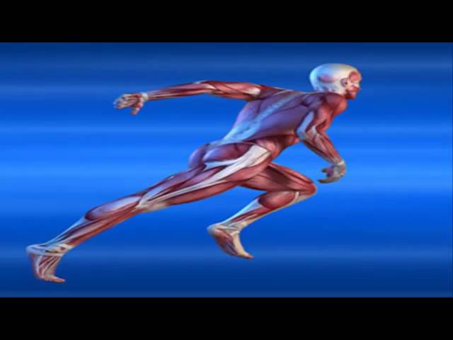 sddefault 20 - Unlock Your Hip flexors DVD Video Exclusive Review - What's in It for Me?