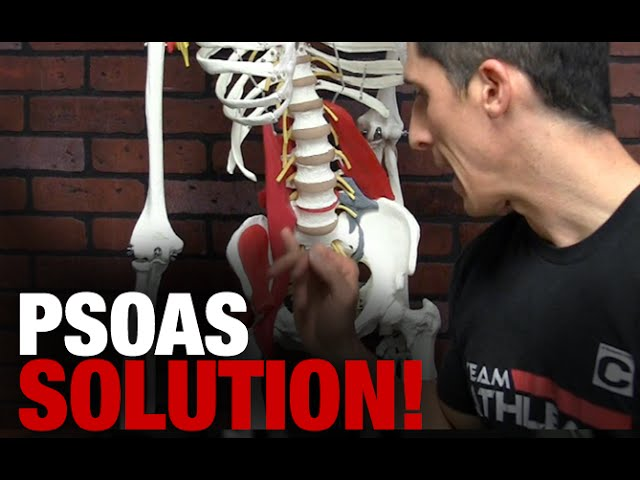 sddefault - The Ultimate Hip Stretch and Mobility Drill (PSOAS SOLUTION!)